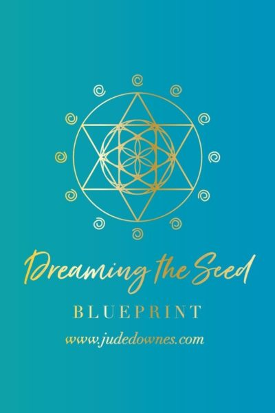 Dreaming the Seed Blueprint Report